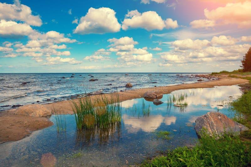 Oostzeekust stock foto