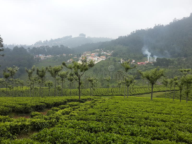 Ooty photographie stock