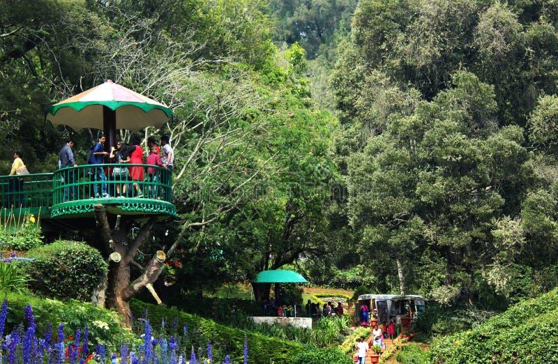 Ooty botanical garden stock images