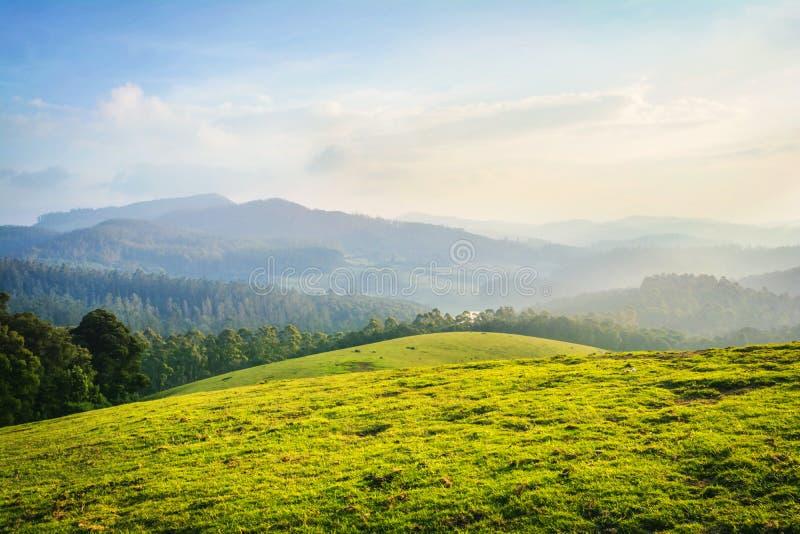 Ooty härligt landskap -, Indien royaltyfria bilder
