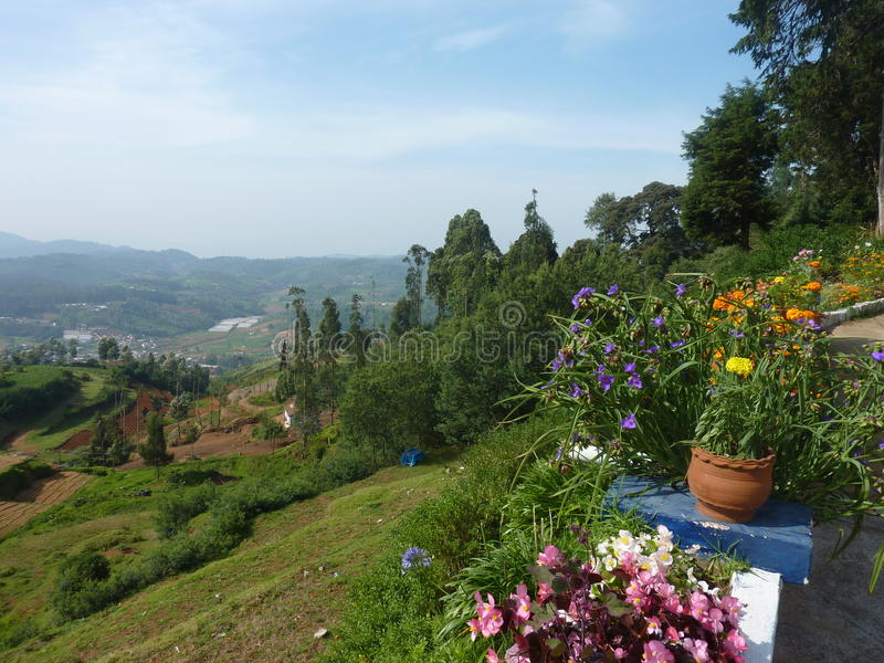 Ooty Landscape Royalty Free Stock Photo
