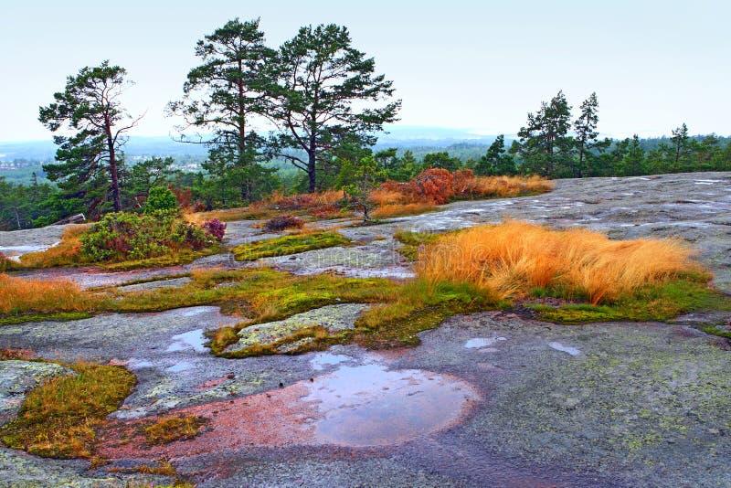 Op de bovenkant van Heta Mountain stock foto's