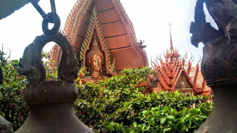 Op de hoge bergtribunes de Boeddhistische tempel van het tijgerhol Thailand royalty-vrije stock foto's