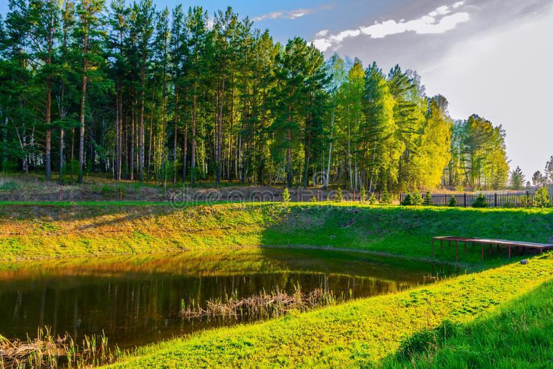 Op de kust van een mooi meer is er een groen bos royalty-vrije stock fotografie
