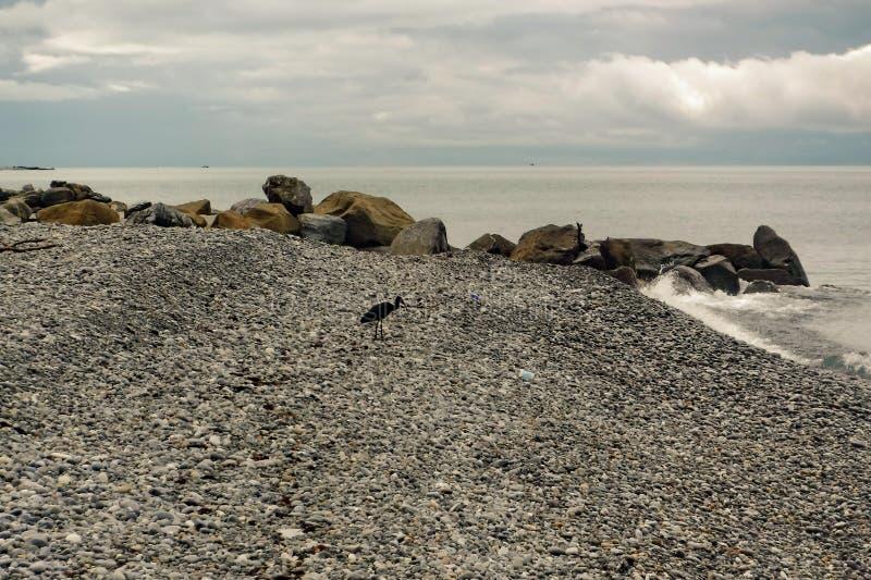 Op de kust van de Zwarte Zee vóór een onweersbui stock foto