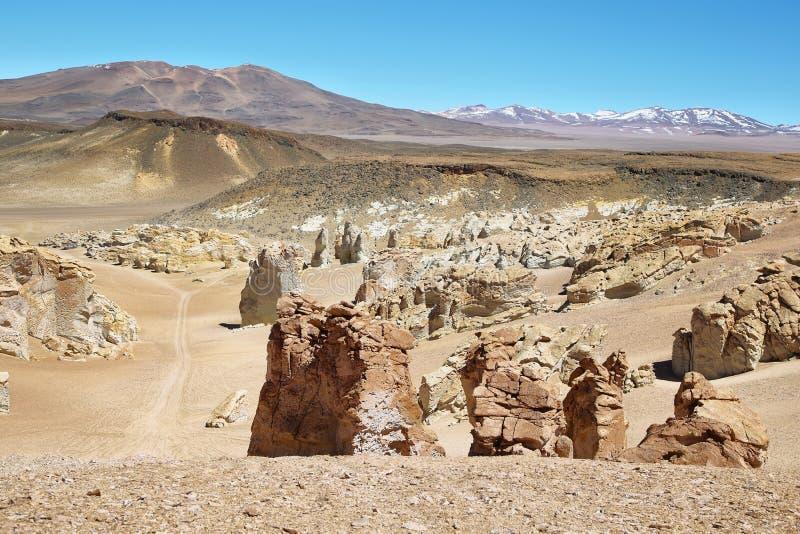 Op de manier aan Salar de Tara, Chili stock afbeelding