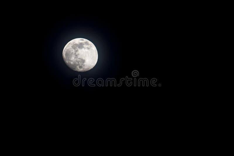 Op de nacht van de volle maan op de zwarte achtergrond isoleer royalty-vrije stock afbeeldingen