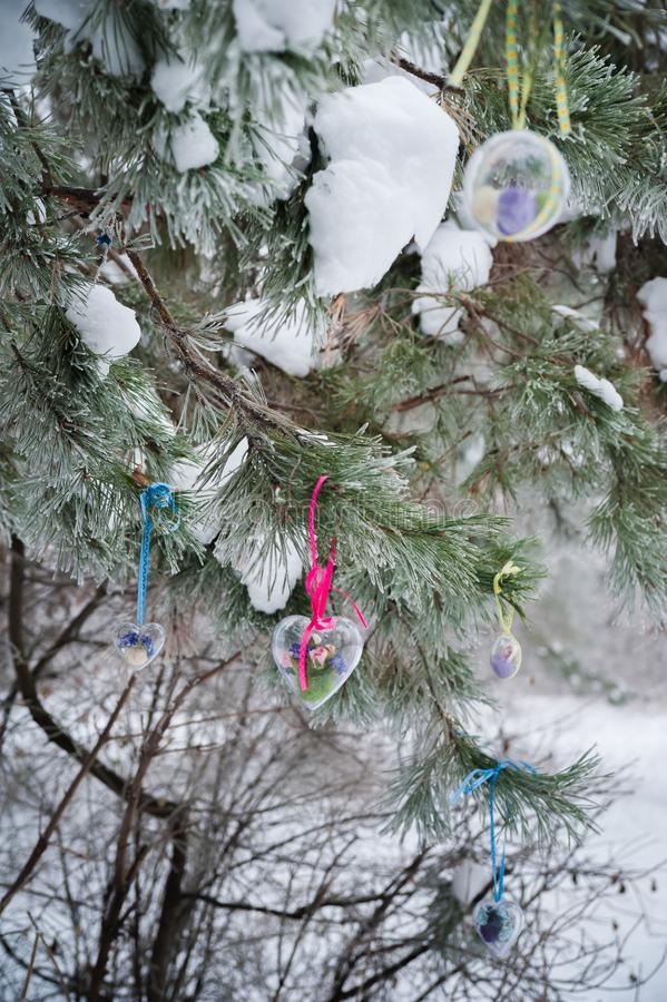 Op de snow-covered tak van Kerstbomen, hangen de Kerstmisdecoratie in de vorm van transparante ballen, harten van gevoeld royalty-vrije stock fotografie