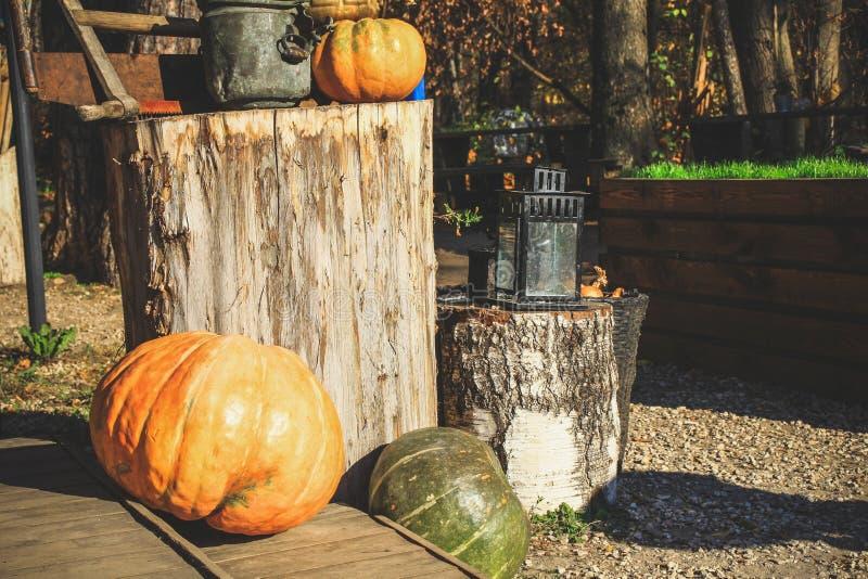 Op de vooravond van Halloween, zijn de pompoenen dichtbij het huis verfraaid w stock foto's