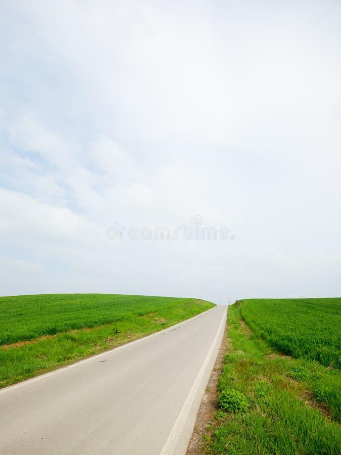 Op de Weg - gras en hemel stock afbeelding