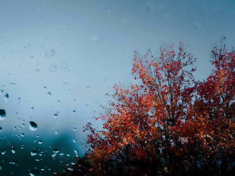 Op een Regenachtige Dag stock afbeeldingen