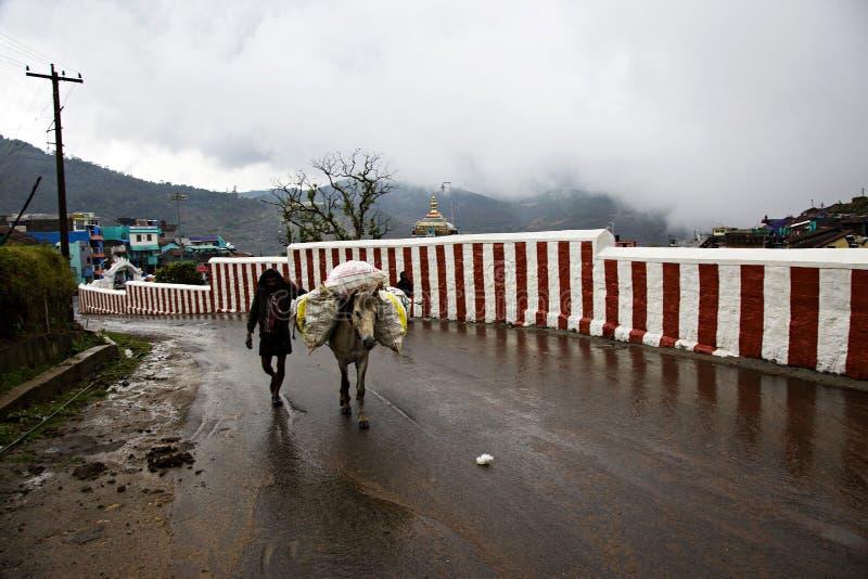 Op een regenachtige dag een mens die langs de weg met het horsehaving van bagage op zijn rug lopen royalty-vrije stock afbeeldingen