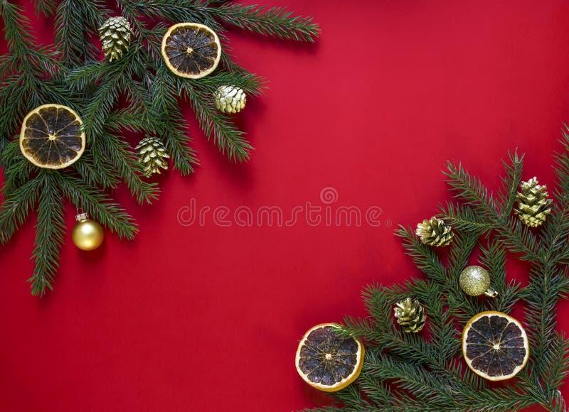 Op een rode achtergrond groene die spartakken met gouden kegels, droge sinaasappelen en ballen in twee hoeken worden verfraaid royalty-vrije stock afbeeldingen