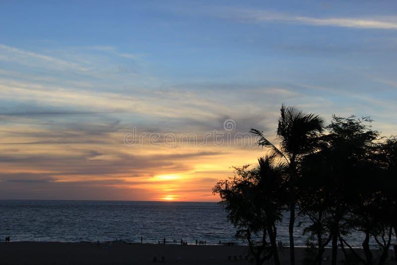 Op een strand Overzees het zand schommelt de aard van Hawaï zonnige palmpool royalty-vrije stock foto's