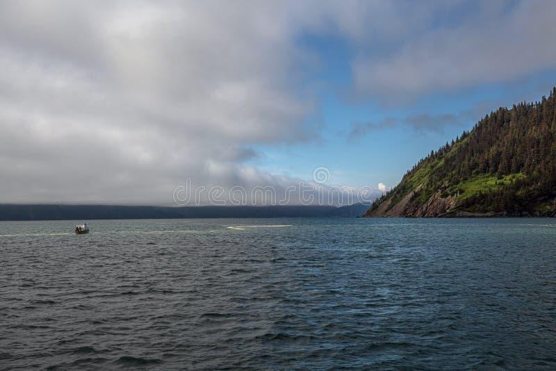 Op Fox Island royalty-vrije stock foto