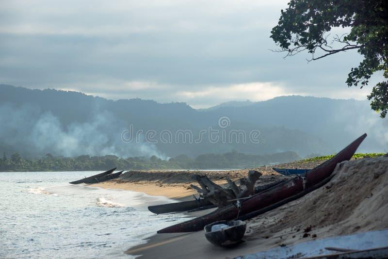 Op het wilde eiland in PNG stock afbeelding