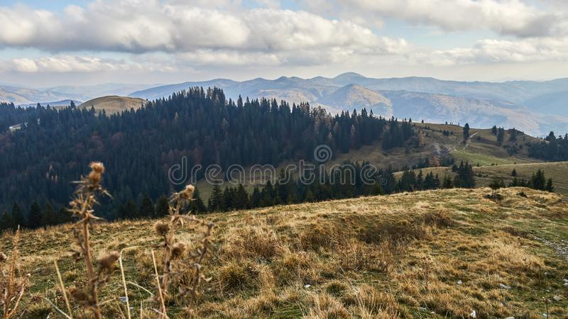 On the op of the hill. Landscape royalty free stock photos