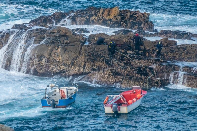 Op noordelijke Spain's-Kust van Dood riskeren de lokale mensen hun leven zoekend de scherpe klippen naar gooseneck eendenmossel stock afbeeldingen