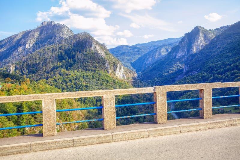 Op Tara Bridge stock fotografie