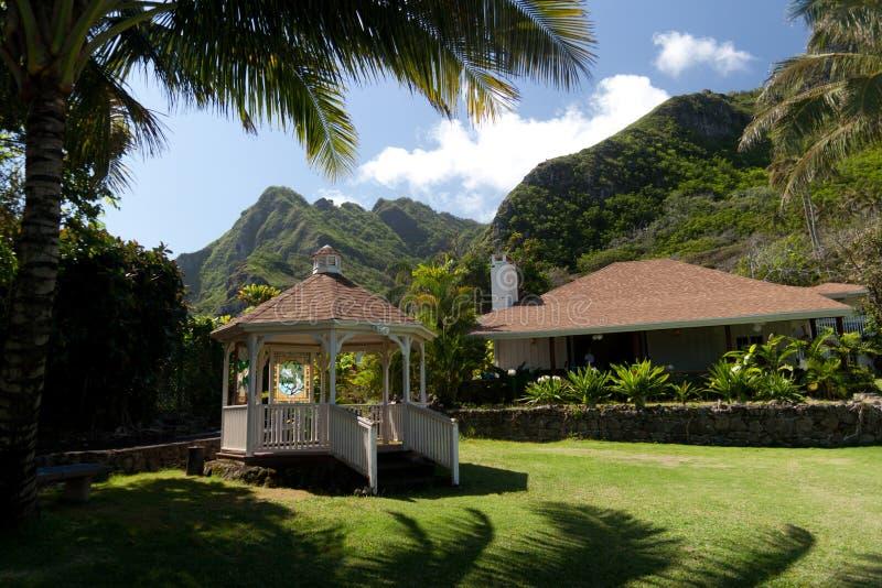 Op vakantie aan Hawaï stock afbeelding