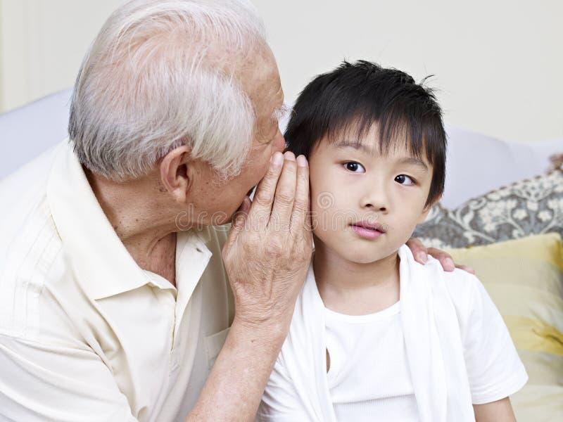 Opa en kleinzoon royalty-vrije stock foto's