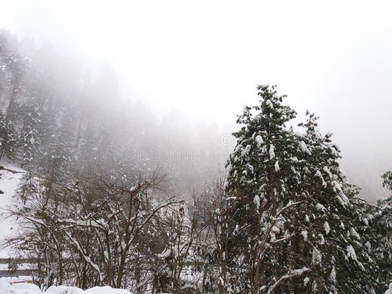 Opad śniegu w Mushkpuri, KPK, Abbotabad zdjęcie royalty free