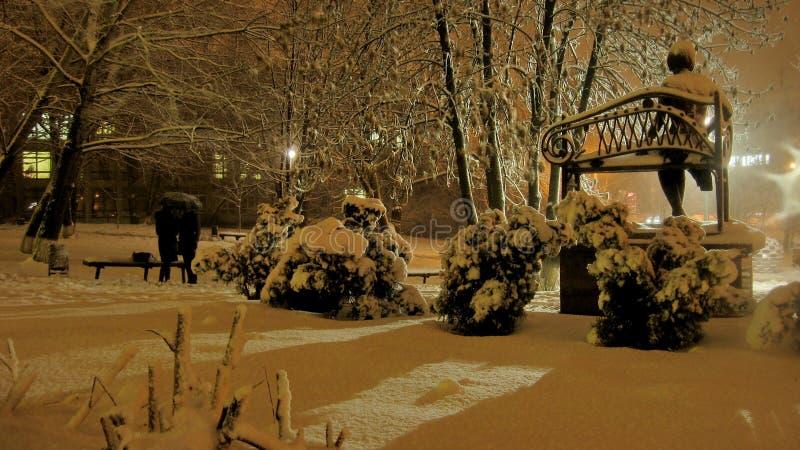 Opad śniegu w parku zdjęcie stock