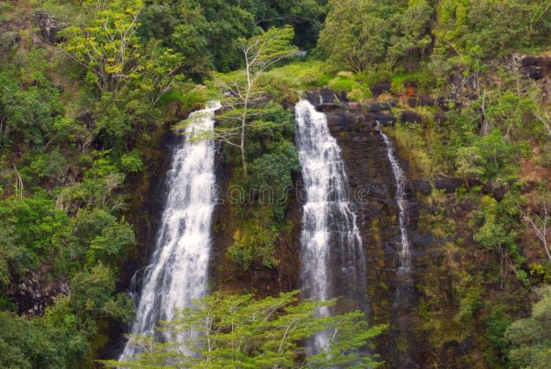 'Opaeka'a Falls stock images