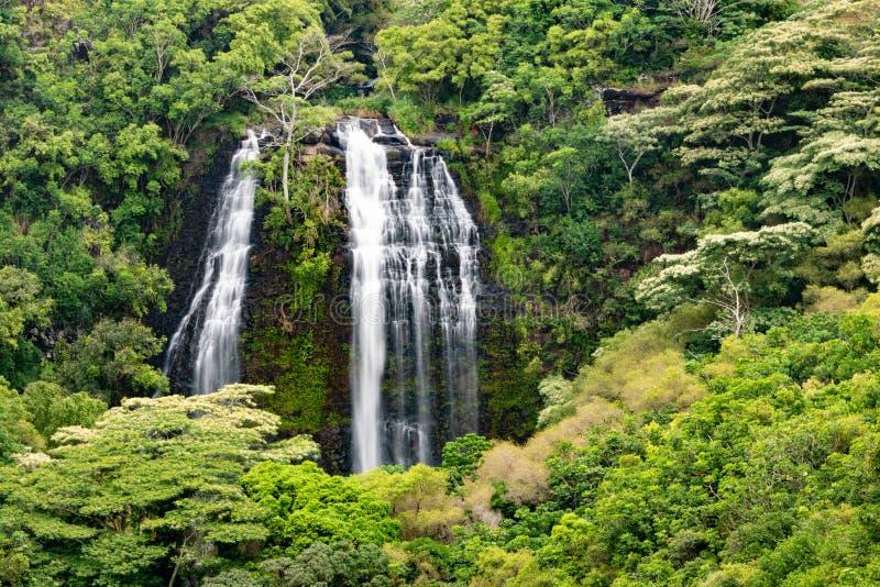 Opaekaa在考艾岛夏威夷下跌 库存照片