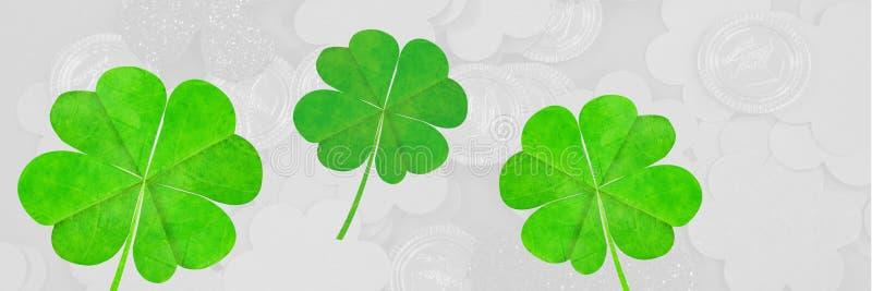 Opanowany wizerunek zielona koniczyna obrazy royalty free