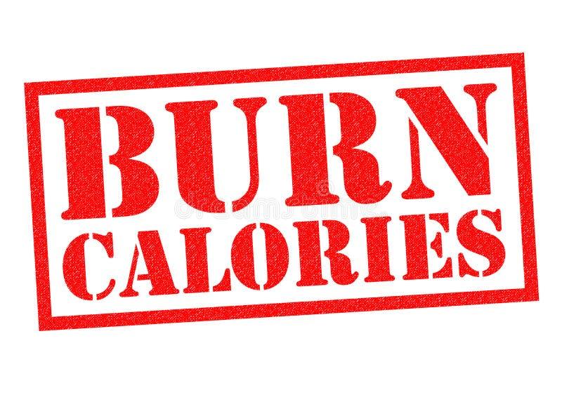 OPARZENIE kalorie royalty ilustracja