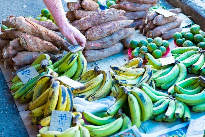 Opbrengst bij de lokale markt royalty-vrije stock foto