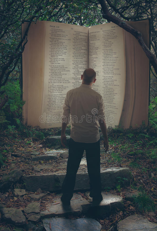 Open Bible in forest stock photos