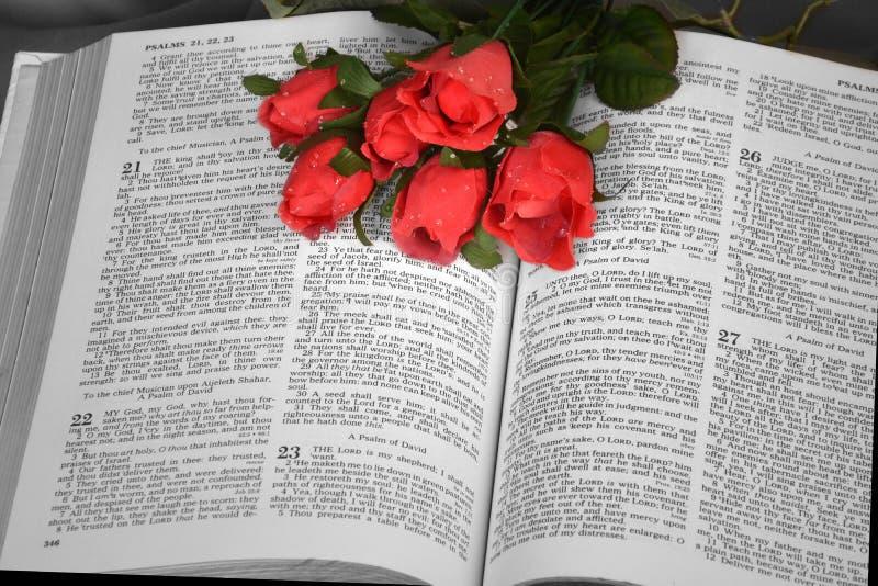 Open Bijbel met rode rozen royalty-vrije stock foto's