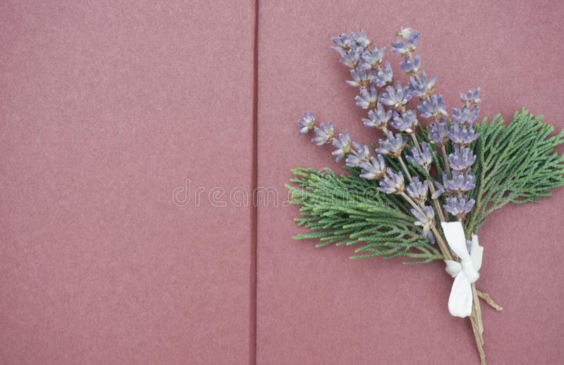 Open blank pages of scrapbook with bunch of lilac lavender and green branches on the right side. Free copy space for text royalty free stock images