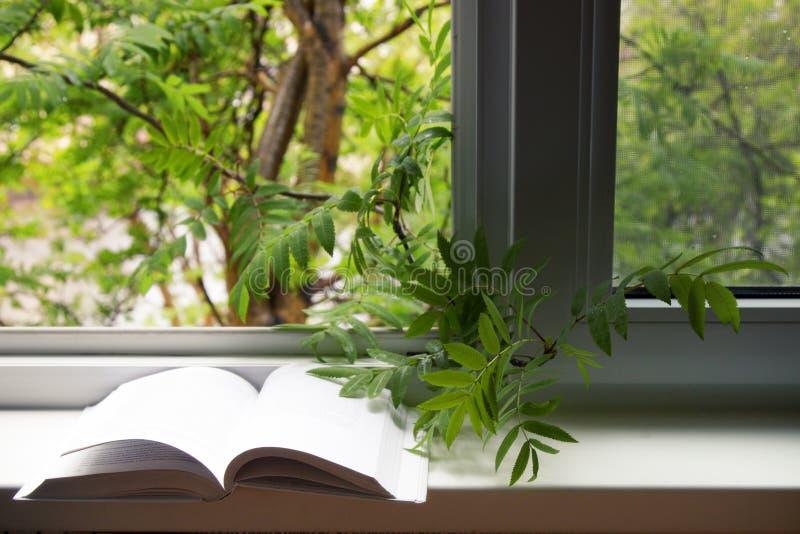 Open boek en oogglazen die op de vensterbank van het open venster liggen stock foto's