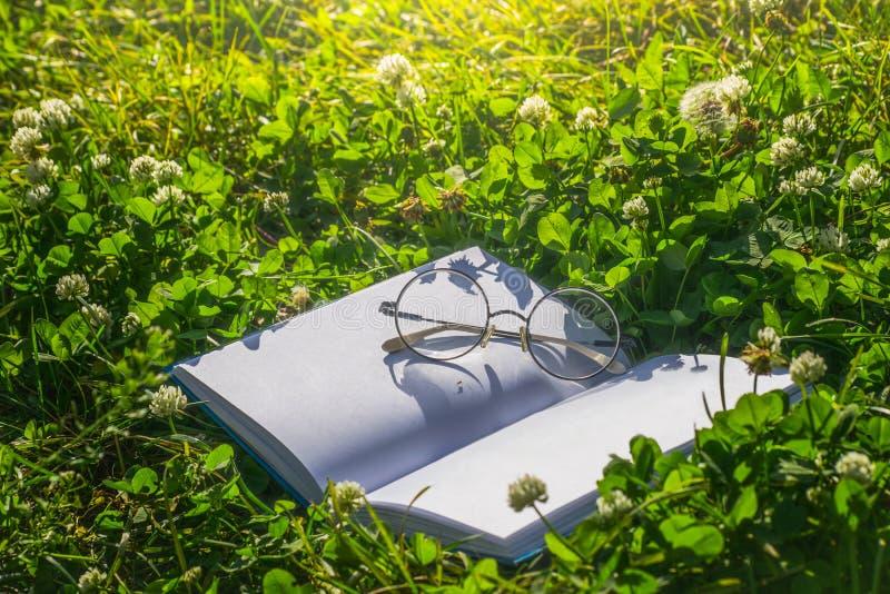Open boek met glazen voor lezing op groen gras royalty-vrije stock afbeelding