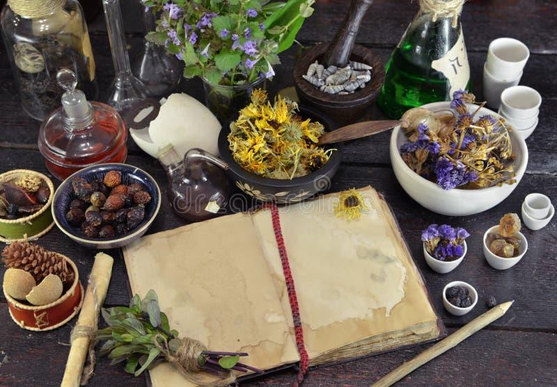 Open boek met kruiden, bessen en bloemen op heksenlijst stock foto's