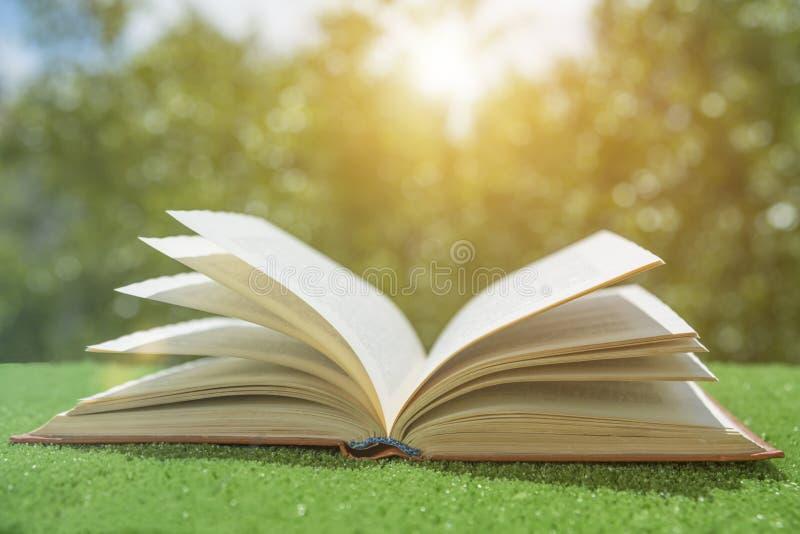 Open boek op het groene gras in de zon stock afbeelding