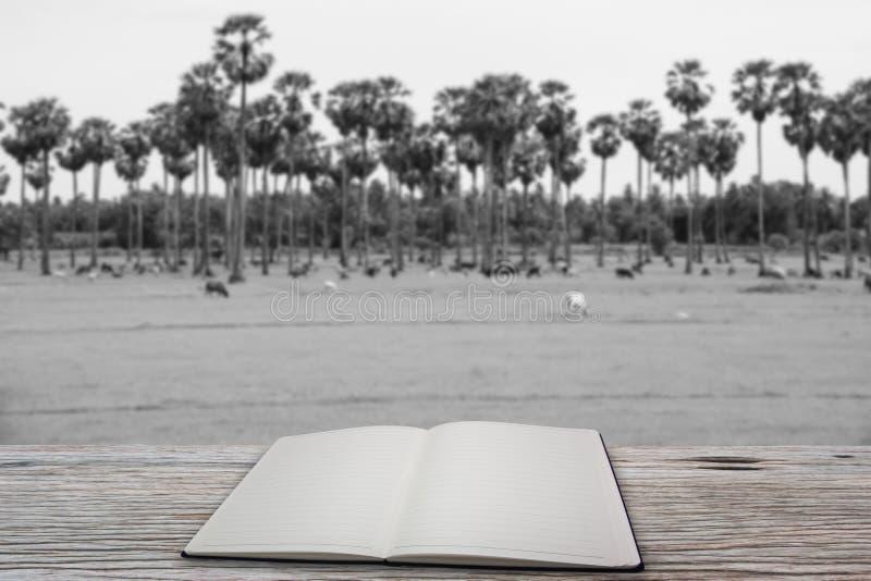 Open boek, Wit en zwarte stock afbeeldingen