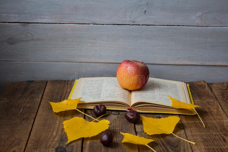 A open book apple yellow leaves chestnut on wooden background stock image