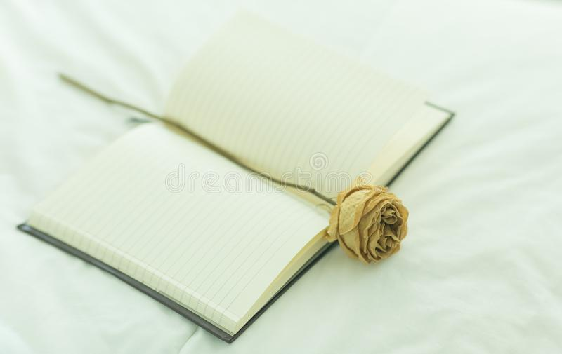 Open Book with a dried Rose. Bedroom. Vintage tone. stock images