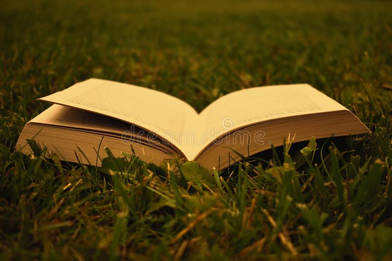 Open book on green grass in the summer stock photography