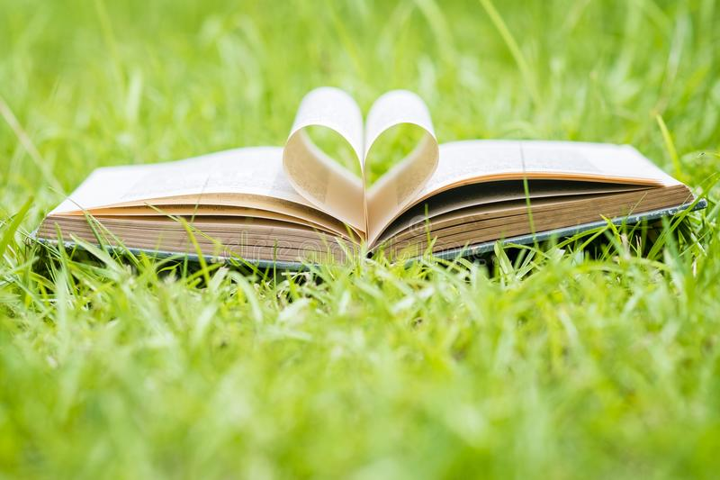 Open Book With Heart Shaped Pages Laying On Grass stock photo
