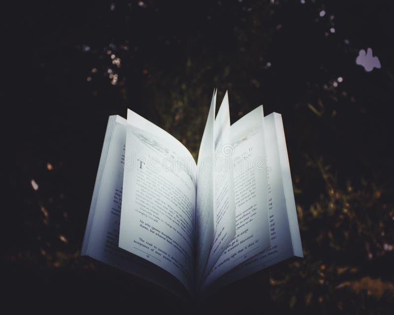 Open book on meadow