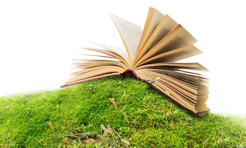 Download Open book on moss/ ground stock photo. Image of peaceful - 20818138