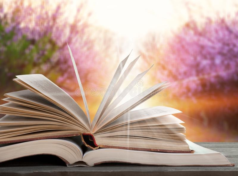 Open book stock image. Image of bible, open, data, culture ...