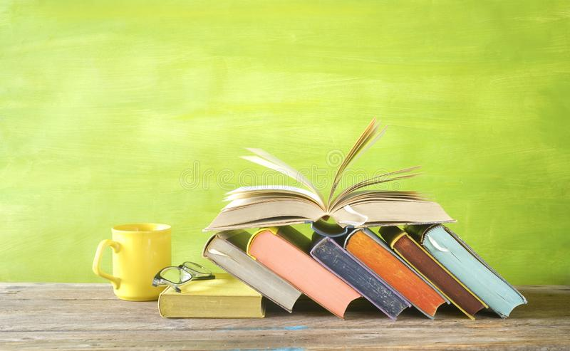 Open Book and row of multicolored hardback books, reading education, literature,book fair concept. Panoramic format, copy stock images