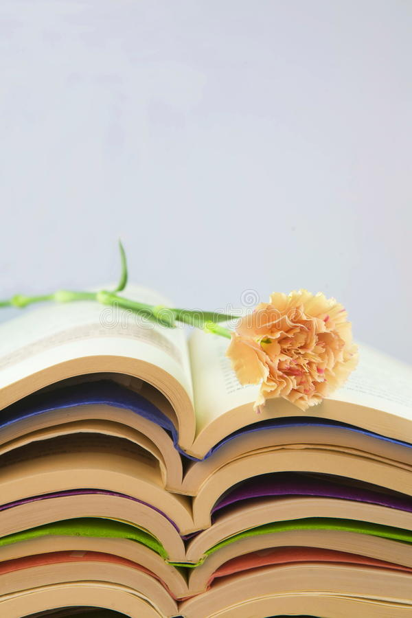 Download Open books stock photo. Image of love, learn, child, novel - 28152774