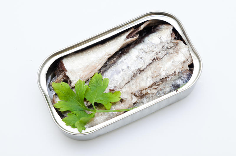 Open can of sardines. Sardines with a white background royalty free stock photos